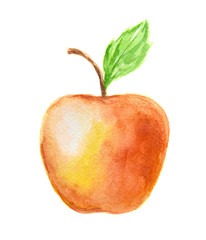 Isolated watercolor red apple on white background. Fresh and sweet fruit. Organic and vegetarian nutrition.