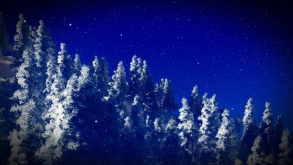Snow covered Christmac forest in mountains 3d rendering