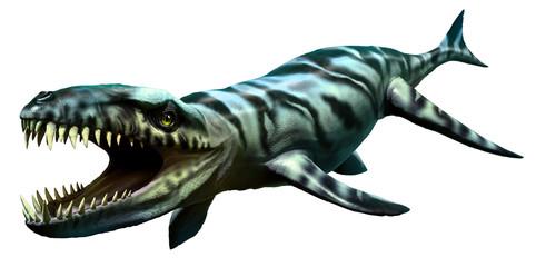 Wall Mural - Dakosaurus