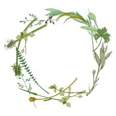 wreath made with wild herbs