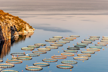 Fish farming near Epidaurus, Greece