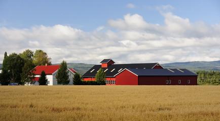 A typical Scandinavian farm