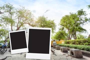 photo frame on big tree blackground blur