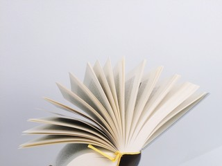 Close-up of an open book against white background