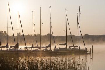 Bootsteg in der Morgensonne