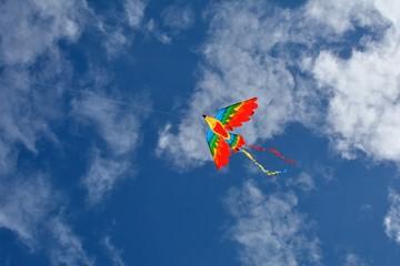 Joli cerf-volant aux couleurs vives dans le ciel bleu en Bretagne plage de Trestel