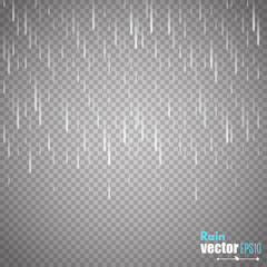 Vector rain isolated on transparent background. Vector