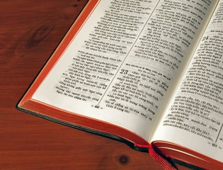 Bible in Vietnamese, open at Psalm 23