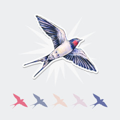 Beautiful swallow vector sticker. Watercolor illustration. Spring bird brings love. Handwork