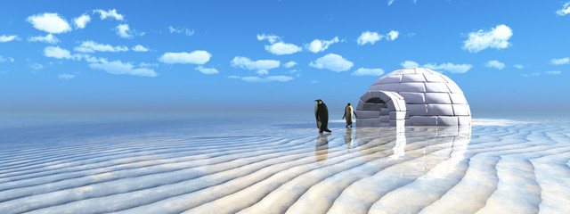 penguins coming out of an igloo