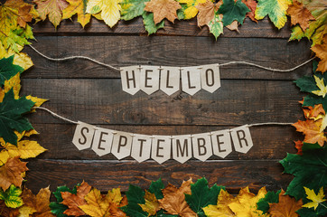 Hello september lettering on paper cardboard eco garland, autumn leafs border, dark brown rustic barn wood background.
