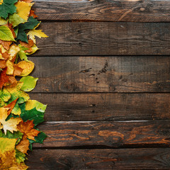 Autumn yellow red green leafs border frame on dark brown barn wood planks background. Square postcard template. Empty space for copy, text, lettering.
