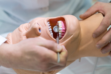 Male dental student practicing on doll.