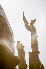 Engel über dem Friedhof