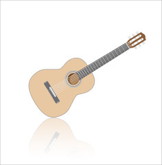 Acoustig guitar, isolated musical instrument with reflection. Vector illustration