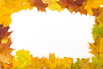 Frame of red and yellow autumn leaves.