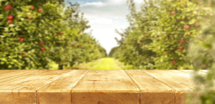 apples and wooden table place