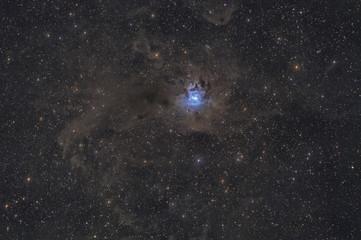 Irisnebel / Iris Nebula, NGC 7023