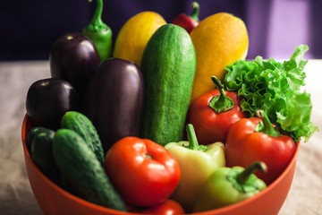 Fresh organic vegetables. Autumn vegetables. Harvesting. Ingredients for the salad. Lettuce, tomatoes, cucumbers, zucchini, eggplant, peppers, chillies.