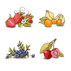 Painted set of berries