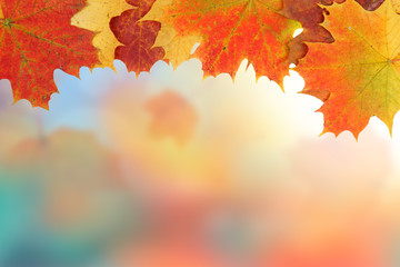 Frame composed of colorful autumn leaves with bokeh
