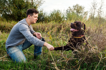 Chocolate labrador retriever is sitting next to a man on a sunny