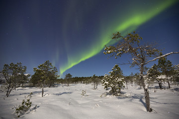 Aurora borealis over a moonlit landscape in northern Norway