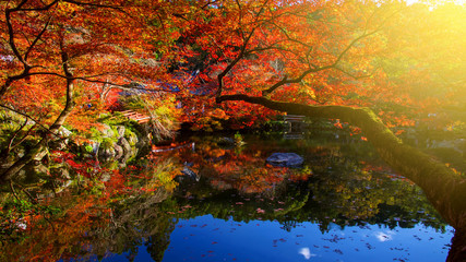 Daigoji temple with Autumn colors, Kyoto