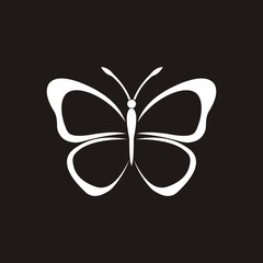 butterfly vector icon logo