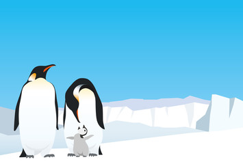 Emperor penguin family on the ice