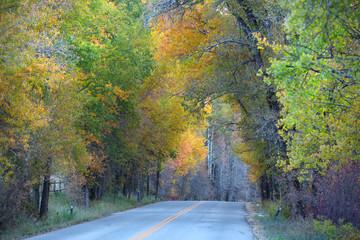 Scenic mountain drive near Aspen Colorado
