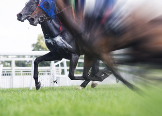 horse racing, selective focus and blurred