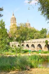 Wall Mural - Park in Salamanca