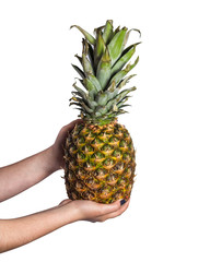 Woman hand holding pineapple on white background
