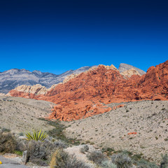 Death Valley and Red Rock Canyon Road Trip