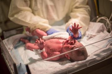 Newborn baby getting bath in hospital