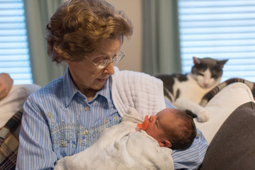Cat looking at great grandmother with newborn baby