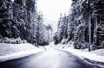 View of road through snow covered forest Fotoväggar