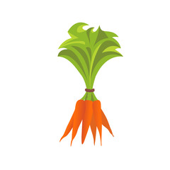 Cartoon Carrots. Detailed Vector Icon. Food ingredients for cooking.