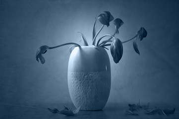 Artistic wilted flowers in vase illustrates mourning, loss and grief. Blue colored still life.
