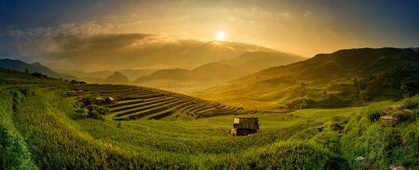 Beautiful rice paddy fields during trip HANOI to SAPA at Tule, Y Wall mural
