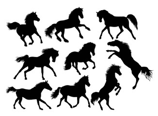 Silhouette of Horse Activity, illustration art vector design