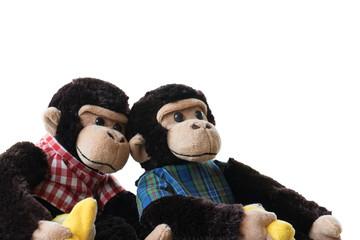 Two stuffed monkeys on a white background