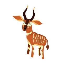 Bongo cartoon character. Isolated on white background. Vector illustration.