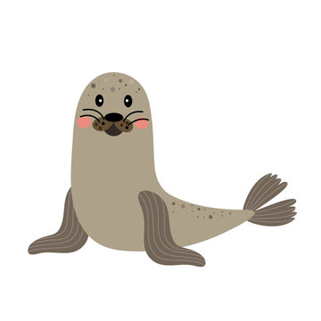 Seal animal cartoon character. Isolated on white background. Vector illustration.