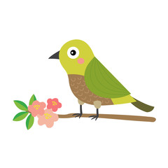 Uguisu bird bird perching branch animal cartoon character. Isolated on white background. Vector illustration.