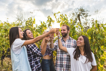 Friends standing and toasting with wine in an Italian vineyard