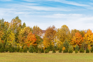 .beautiful autumn panoramic view of the village