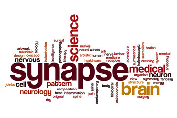 Synapse word cloud