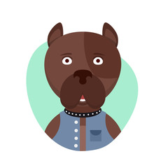 Cartoon cute pitbull dog. Isolated objects on white background in flat cartoon style. Vector illustration.